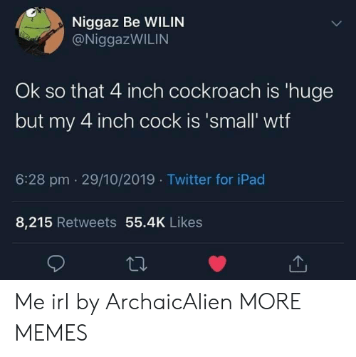 cockroach: Niggaz Be WILIN  @NiggazWILIN  Ok so that 4 inch cockroach is 'huge  but my 4 inch cock is 'small' wtf  6:28 pm 29/10/2019 Twitter for iPad  8,215 Retweets 55.4K Likes Me irl by ArchaicAlien MORE MEMES