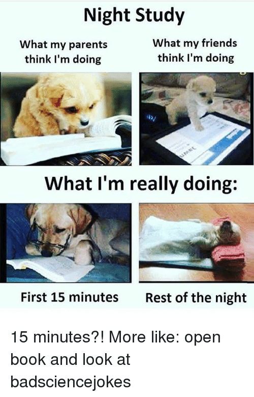 Friends, Memes, and Parents: Night Study  What my parents  think I'm doing  What my friends  think l'm doing  What I'm really doing:  First 15 minutes  Rest of the night 15 minutes?! More like: open book and look at badsciencejokes