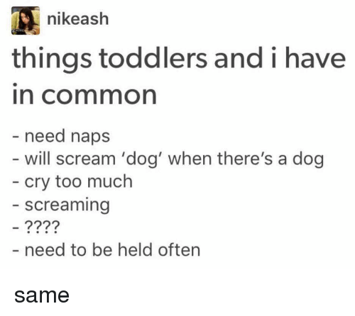 Girl Memes, Ashes, and Nap: nike ash  things toddlers and i have  In Cormmon  need naps  will scream 'dog' when there's a dog  cry too much  screaming  need to be held often same