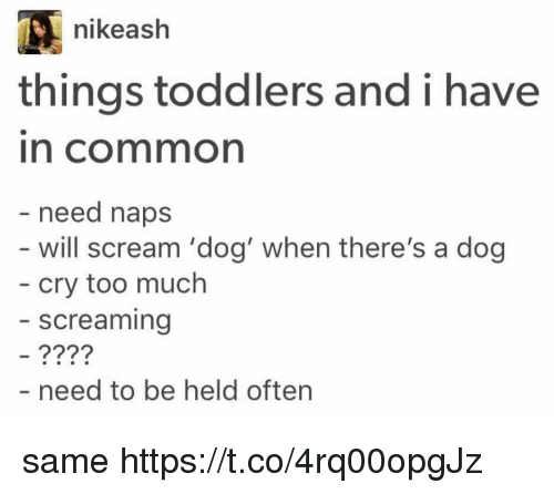 Ash, Nike, and Scream: nike ash  things toddlers and i have  In Cormmon  need naps  will scream 'dog' when there's a dog  cry too much  screaming  need to be held often same https://t.co/4rq00opgJz