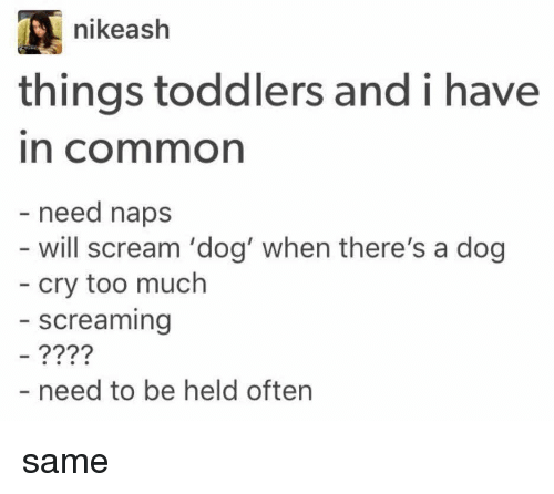 Ash, Nike, and Scream: nike ash  things toddlers and i have  need naps  will scream 'dog' when there's a dog  cry too much  screaming  need to be held often same