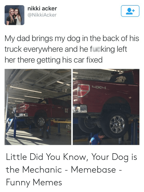 Funny Mechanic Memes: nikki acker  @NikkiAcker  My dad brings my dog in the back of his  truck everywhere and he fucking left  her there getting his car fixed Little Did You Know, Your Dog is the Mechanic - Memebase - Funny Memes