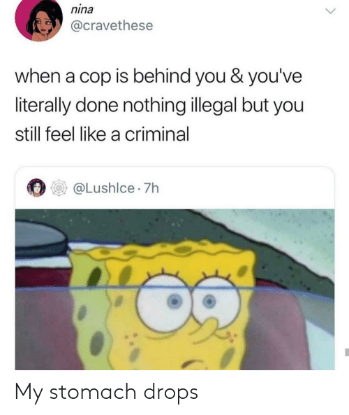 nina: nina  @cravethese  when a cop is behind you & you've  literally done nothing illegal but you  still feel like a criminal  @Lushlce 7h My stomach drops