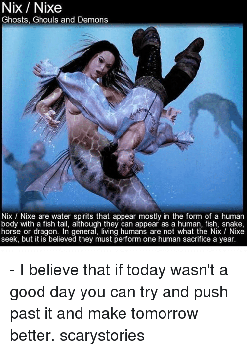 25 best memes about nix nix memes for Is tomorrow a good fishing day