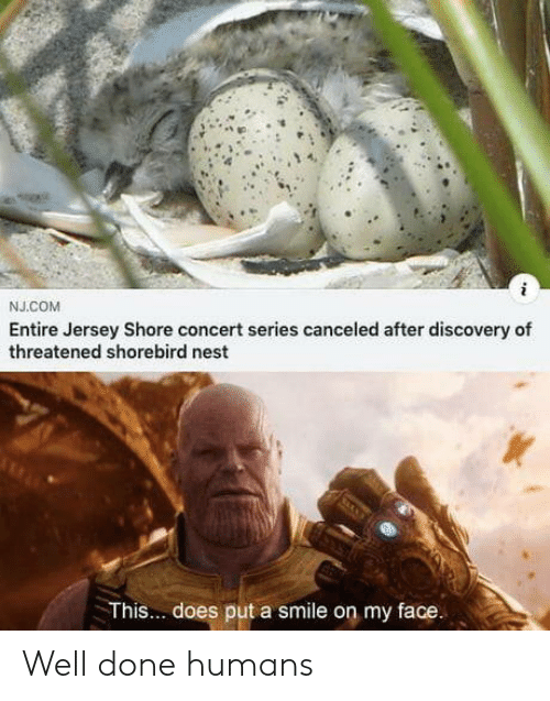 Nest: NJ.COM  Entire Jersey Shore concert series canceled after discovery of  threatened shorebird nest  This... does put a smile on my face. Well done humans