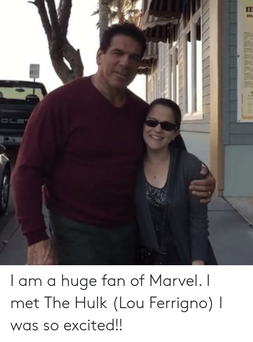 lou ferrigno: nm I am a huge fan of Marvel. I met The Hulk (Lou Ferrigno) I was so excited!!