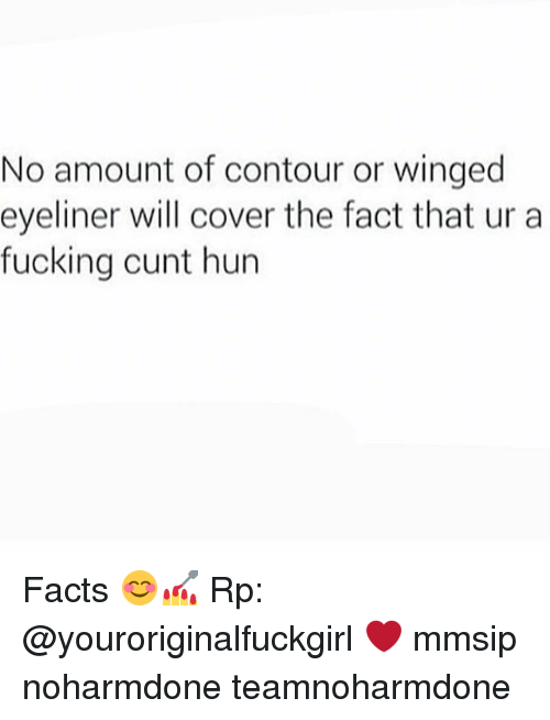 Facts, Fucking, and Memes: No amount of contour or winged  eyeliner will cover the fact that ur a  fucking cunt hun Facts 😊💅 Rp: @youroriginalfuckgirl ❤ mmsip noharmdone teamnoharmdone