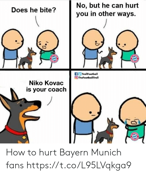 Bayern: No, but he can hurt  you in other ways  Does he bite?  f TrollFootball  TheFootballTroll  Niko Kovac  is your coach How to hurt Bayern Munich fans https://t.co/L95LVqkga9