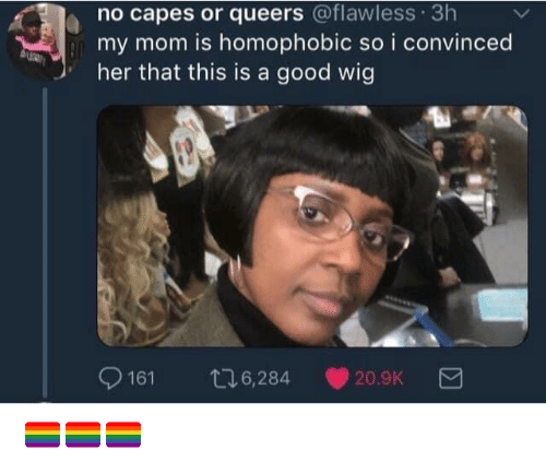 No Capes: no capes or queers @flawless 3h  my mom is homophobic so i convinced  her that this is a good wig  9161 t6,284 20.9K 🏳️🌈🏳️🌈🏳️🌈