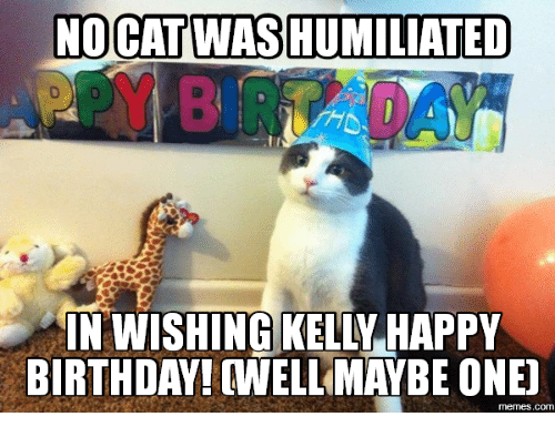 Funny Happy Cat Memes of 2017 on SIZZLE | if Youre Having ...
