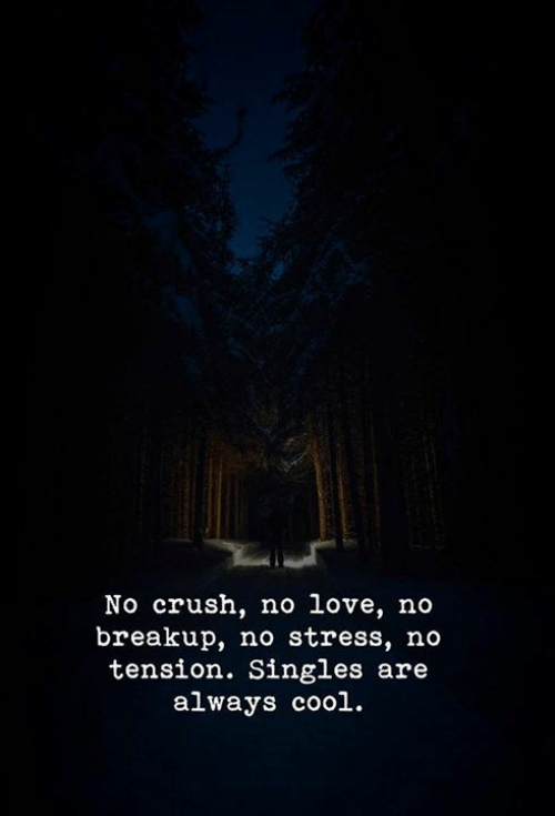 breakup: No crush, no love, no  breakup, no stress, no  tension. Singles are  always cool