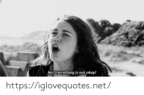 Not Okay: No! Everything is not okay! https://iglovequotes.net/