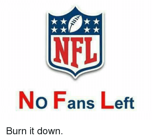 Memes, 🤖, and Down: No Fans Left Burn it down.