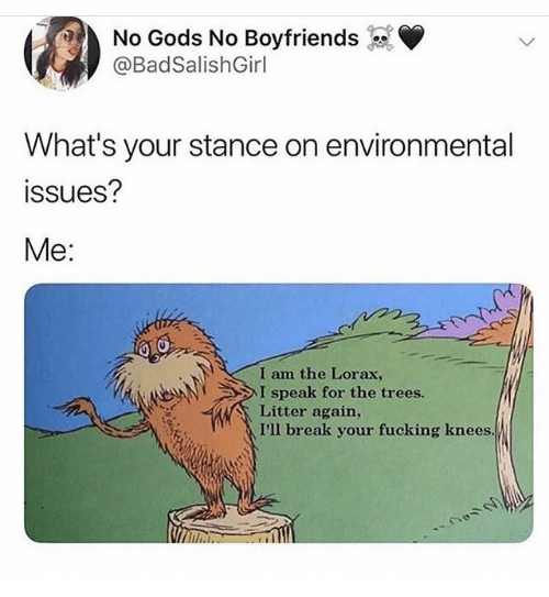 boyfriends: No Gods No Boyfriends  @BadSalishGirl  What's your stance on environmental  ssues?  Me:  I am the Lorax,  I speak for the trees.  Litter again,  I'll break your fucking knees.