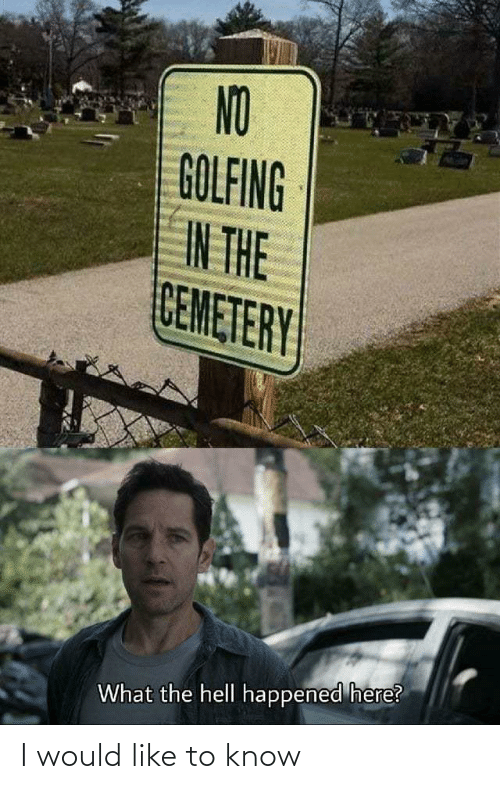 Golfing: NO  GOLFING  IN THE  CEMETERY  What the hell happened here? I would like to know