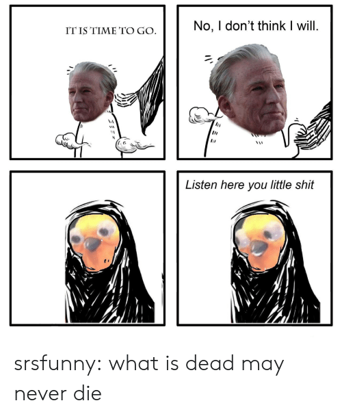 Listen Here You Little: No, I don't think I will  IT IS TIME TO GO  Listen here you little shit srsfunny:  what is dead may never die