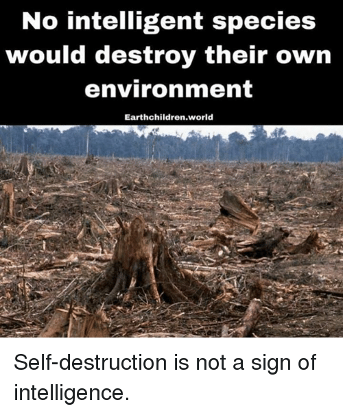 Image result for no intelligent species would destroy their own environment