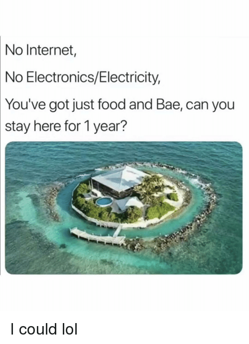 no internet: No  Internet  No Electronics/Electricity,  You've got just food and Bae, can you  stay  here for 1 year? I could lol