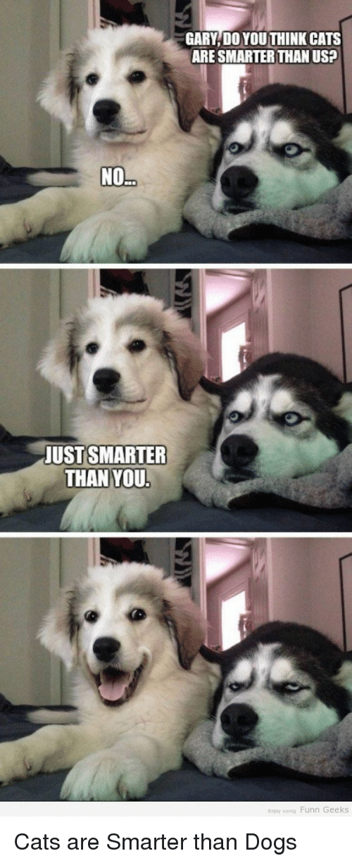 funn: NO  JUST SMARTER  THAN YOU.  GARY DO YOU THINK CATS  ARE SMARTER THAN US2  enjoy using Funn Geeks Cats are Smarter than Dogs