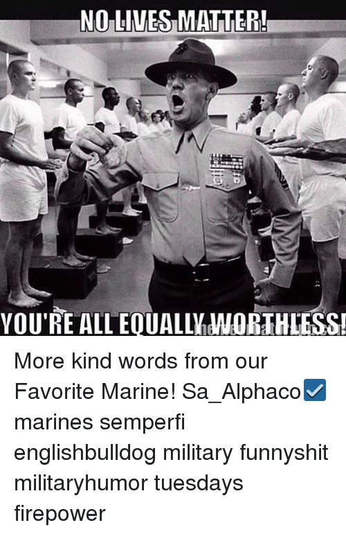 Memes, Marines, and Military: NO LIVES MATTER!  YOU'RE ALL EQUALLM WORTHLESS! More kind words from our Favorite Marine! Sa_Alphaco☑️ marines semperfi englishbulldog military funnyshit militaryhumor tuesdays firepower