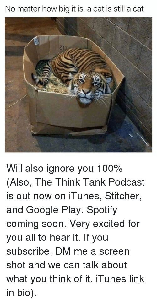 iTunes: No matter how big it is, a cat is still a cat Will also ignore you 100% (Also, The Think Tank Podcast is out now on iTunes, Stitcher, and Google Play. Spotify coming soon. Very excited for you all to hear it. If you subscribe, DM me a screen shot and we can talk about what you think of it. iTunes link in bio).