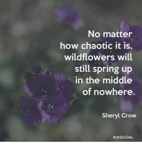 Spring, The Middle, and How: No matter  how chaotic it is,  wildflowers will  still spring up  in the middle  of nowhere  Sheryl Crow  wordables.