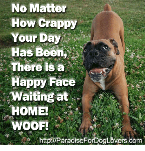 happy face: No Matter  How Crappy  Your Day  Has Been  There IS a  Happy Face  Waiting at  HOME!  WOOF!  httpTIParadiseForDoaLovers.com