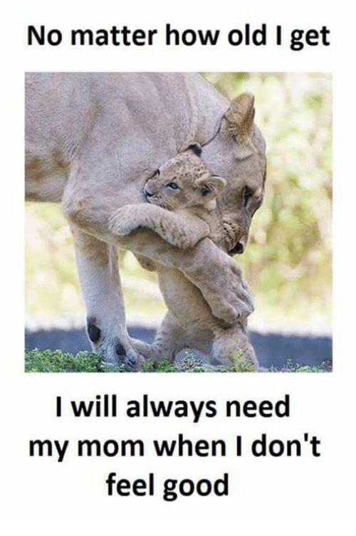 Memes, Good, and Old: No matter how old I get  I will always need  my mom when I don't  feel good