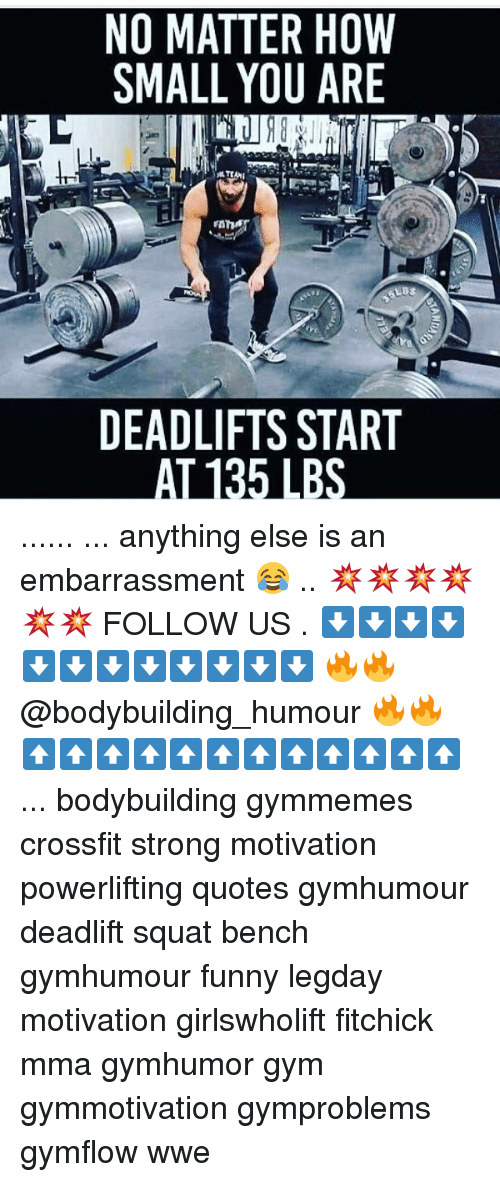 Funny, Gym, and Memes: NO MATTER HOW  SMALL YOU ARE  LBS  DEADLIFTS START  AL135 LBS ...... ... anything else is an embarrassment 😂 .. 💥💥💥💥💥💥 FOLLOW US . ⬇️⬇️⬇️⬇️⬇️⬇️⬇️⬇️⬇️⬇️⬇️⬇️ 🔥🔥@bodybuilding_humour 🔥🔥 ⬆️⬆️⬆️⬆️⬆️⬆️⬆️⬆️⬆️⬆️⬆️⬆️ ... bodybuilding gymmemes crossfit strong motivation powerlifting quotes gymhumour deadlift squat bench gymhumour funny legday motivation girlswholift fitchick mma gymhumor gym gymmotivation gymproblems gymflow wwe