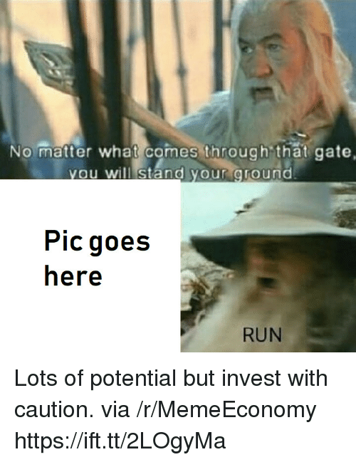 Run, Gate, and Invest: No matter what comes through that gate,  ou wil stand your Oround  Pic goes  here  RUN Lots of potential but invest with caution. via /r/MemeEconomy https://ift.tt/2LOgyMa