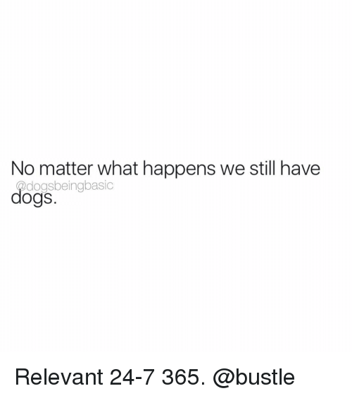 Relevancy: No matter what happens we still have  dogsbeingbasic  dogs Relevant 24-7 365. @bustle