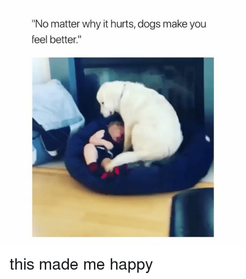 """Dogs, Happy, and Girl Memes: """"No matter why it hurts, dogs make you  feel better."""" this made me happy"""
