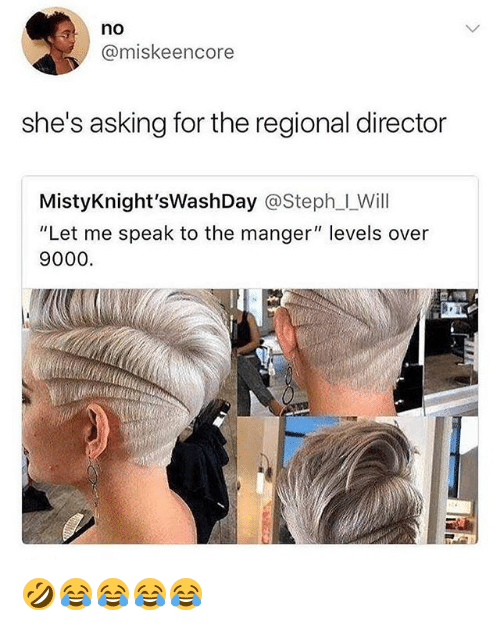 "Girl Memes, Asking, and Will: no  @miskeencore  she's asking for the regional director  MistyKnight'sWashDay @Steph_l_Will  ""Let me speak to the manger"" levels over  9000. 🤣😂😂😂😂"