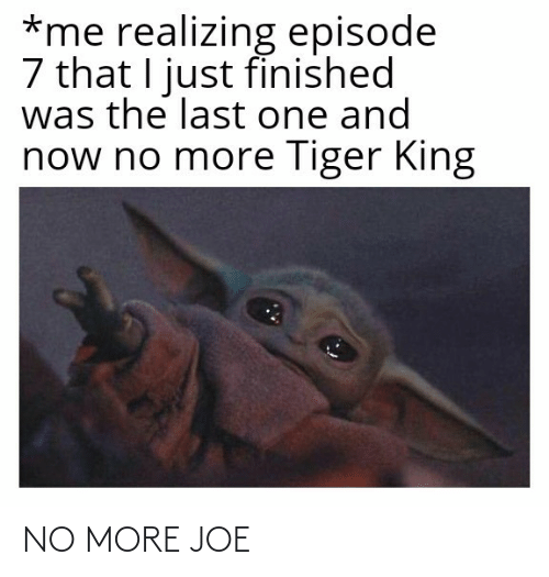 joe: NO MORE JOE