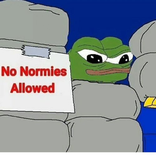 no normies allowed meme on sizzle