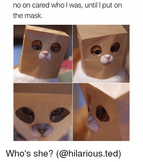 Masked: no on cared who I was, until I put on  the mask. Who's she? (@hilarious.ted)