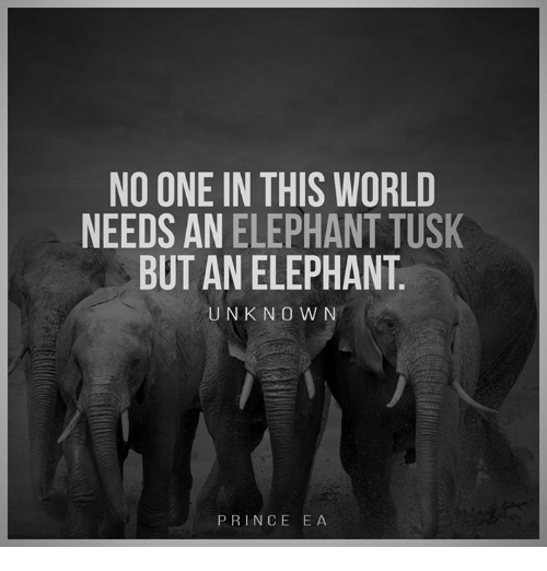 Tusk: NO ONE IN THIS WORLD  NEEDS AN ELEPHANT TUSK  BUT AN ELEPHANT  UNKNOWN  PRINCE EA