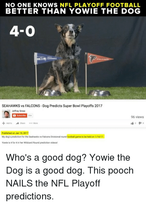 Memes, NFL Playoffs, and Super Bowl: NO ONE KNOWS NFL PLAYOFF FOOTBALL  BETTER THAN YOWIE THE DOG  4-0  FALED  SEAHAWKS vs FALCONS Dog Predicts Super Bowl Playoffs 2017  Jeffrey Smee  Subscribe  314  96 views  Add to Share More  Published on Jan 10, 2017  My dog's prediction for the Seahawks vs Falcons Divisional round football game to be held on 1/14/17.  Yowie is 4 for 4 in her Wildcard Round prediction videos! Who's a good dog? Yowie the Dog is a good dog. This pooch NAILS the NFL Playoff predictions.