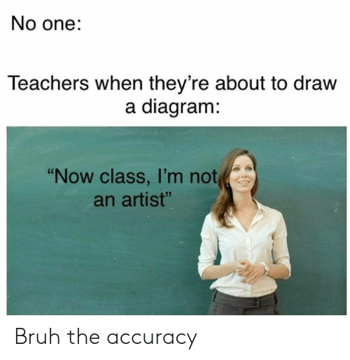 "accuracy: No one:  Teachers when they're about to draw  a diagram:  ""Now class, I'm not  an artist"" Bruh the accuracy"