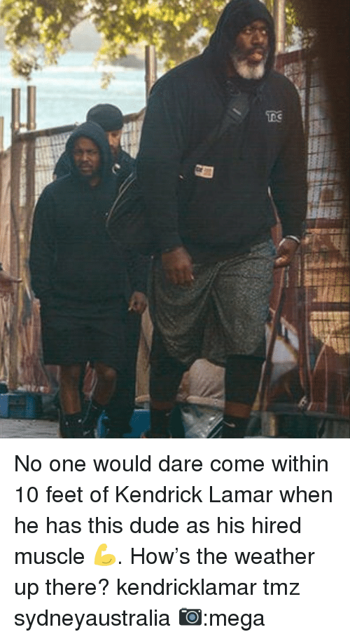Dude, Kendrick Lamar, and Memes: No one would dare come within 10 feet of Kendrick Lamar when he has this dude as his hired muscle 💪. How's the weather up there? kendricklamar tmz sydneyaustralia 📷:mega