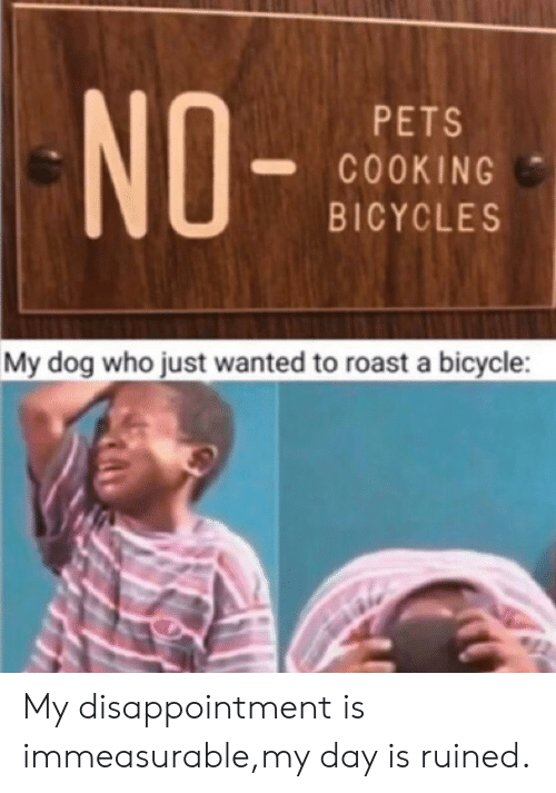 roast: NO-  PETS  COOKING  BICYCLES  My dog who just wanted to roast a bicycle: My disappointment is immeasurable,my day is ruined.