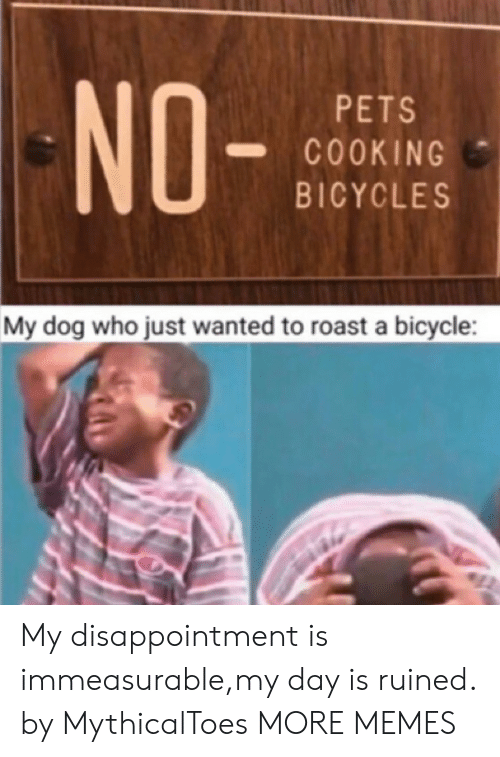 disappointment: NO-  PETS  COOKING  BICYCLES  My dog who just wanted to roast a bicycle My disappointment is immeasurable,my day is ruined. by MythicalToes MORE MEMES