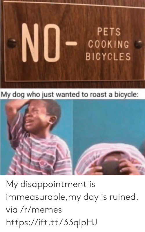 disappointment: NO-  PETS  COOKING  BICYCLES  My dog who just wanted to roast a bicycle My disappointment is immeasurable,my day is ruined. via /r/memes https://ift.tt/33qlpHJ