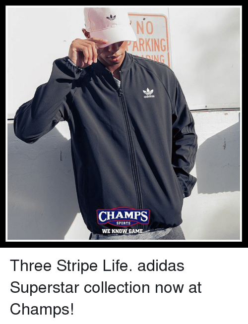 Adidas, Life, and Memes: NO  RKING  adidas  CHAMPS  SPORTS  WE KNOW GAME Three Stripe Life. adidas Superstar collection now at Champs!