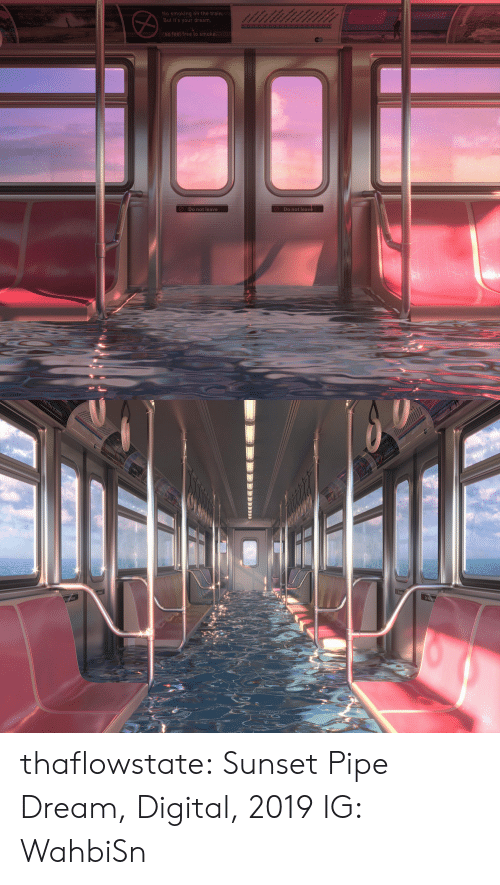 Sunset: No smoking on the train.  But it's your dream,  aean  So feel free to smoke.  Do not leave  Do not leave   t free to sm thaflowstate:   Sunset Pipe Dream, Digital, 2019    IG: WahbiSn