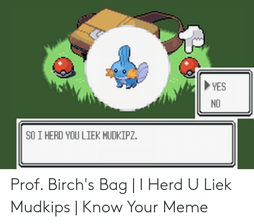 Liek Mudkips: NO  SO I HERD YOU LIEK MUDKIPZ. Prof. Birch's Bag | I Herd U Liek Mudkips | Know Your Meme
