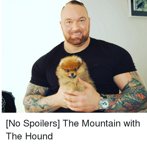 no spoilers the mountain with the hound 2613129 no spoilers the mountain with the hound game of thrones meme on