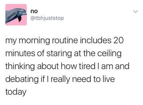 morning routine: no  @tbhjuststop  my morning routine includes 20  minutes of staring at the ceiling  thinking about how tired I am and  debating if I really need to live  today
