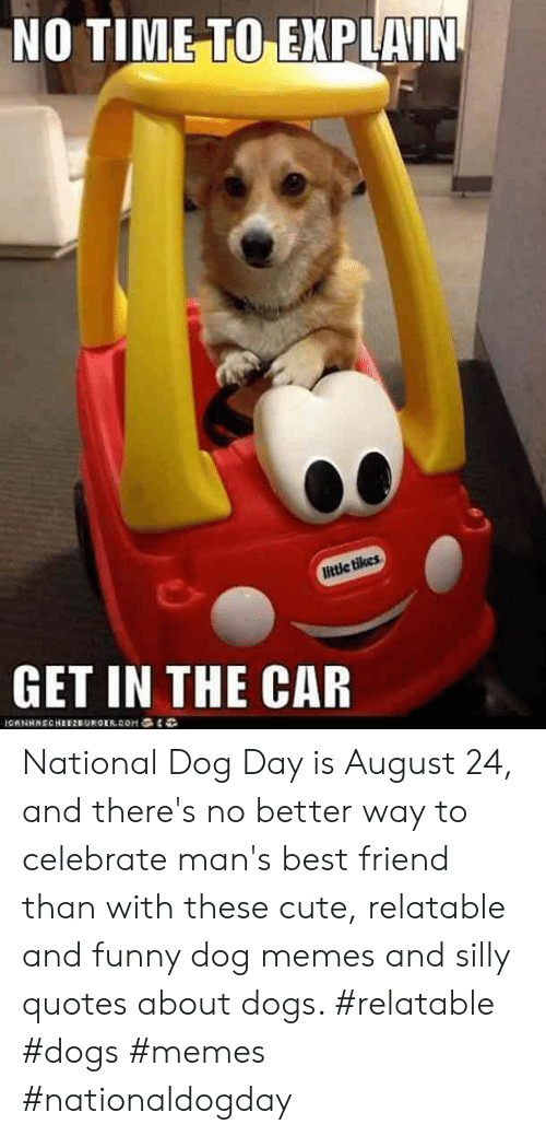 Silly Quotes: NO TIME TO EXPLAIN  little tikes  GET IN THE CAR  OANHAECHEEEUEGER.CoM National Dog Day is August 24, and there's no better way to celebrate man's best friend than with these cute, relatable and funny dog memes and silly quotes about dogs.  #relatable #dogs #memes #nationaldogday