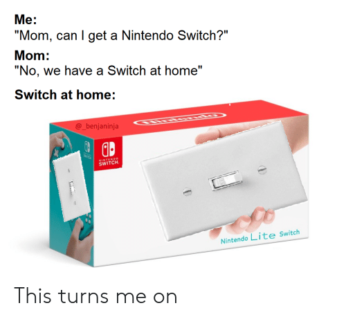 """Nintendo Switch : """"No, we have a Switch at home""""  SWTCK  Nintendo Lite Switch  @_benjaninja  SWITCH  """"Mom, can I get a Nintendo Switch?""""  Me:  Mom:  ENDO  Switch at home: This turns me on"""